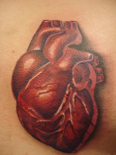 Deep Red Anatomical Heart Tattoo Design