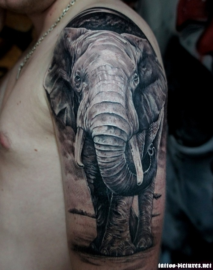 Half Sleeve Elephant Tattoo Design For Guys