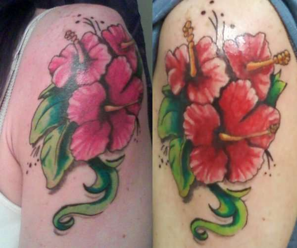 Hibiscus Tattoo Images