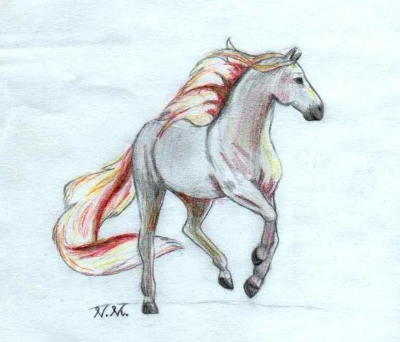 Brilliant Horse Tattoo Design