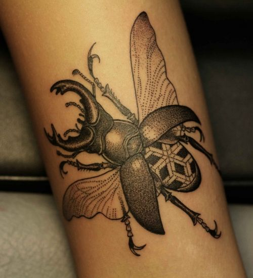Insect Tattoos Designs And Ideas  Page 35