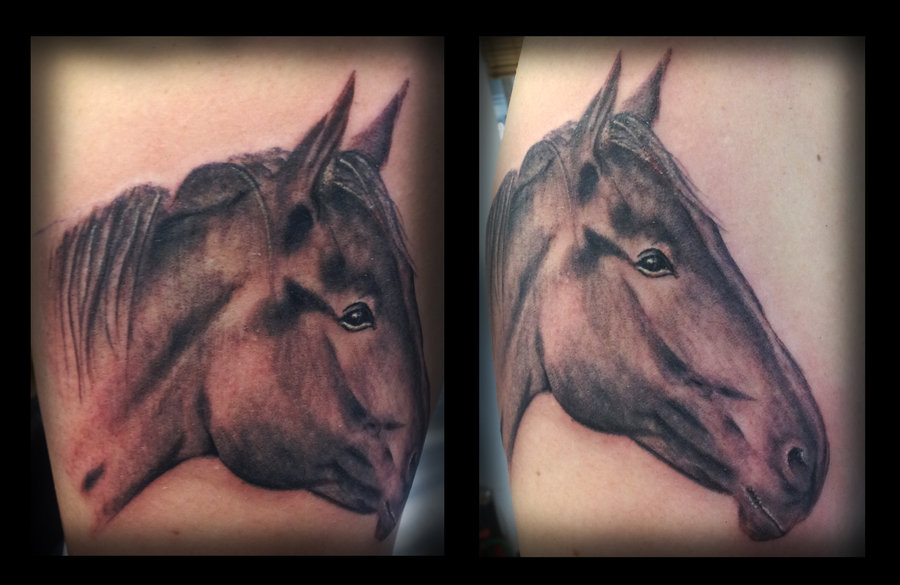 Horse Portrait Tattoo Design