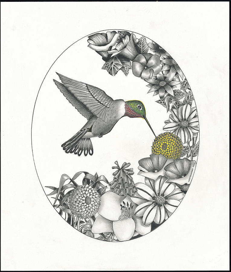 Hummingbird In Flight Bryan Austerberry Tattoo Card