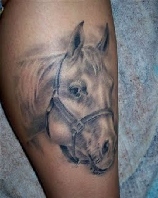 Realistic Horse Head Tattoo Design