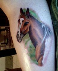 Realistic Horse Tattoo Art