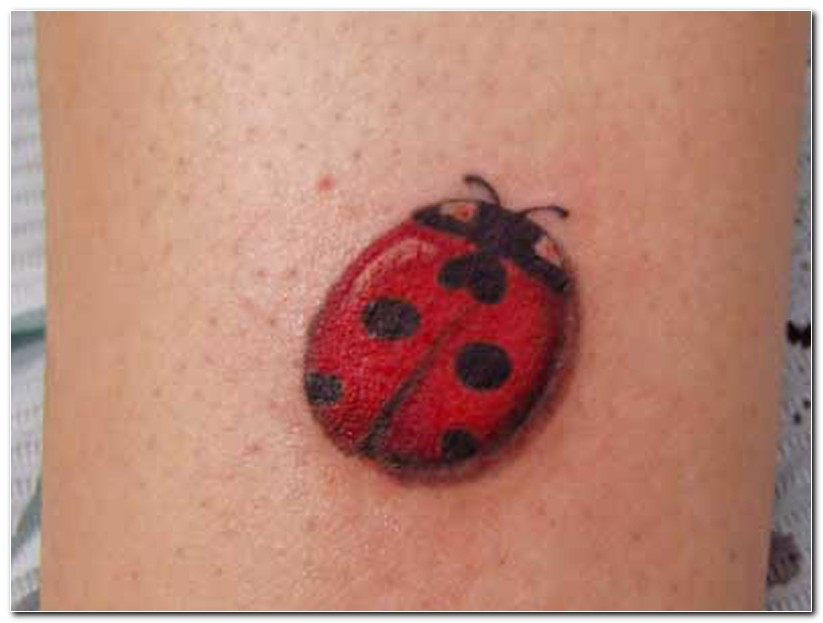 Red Ladybug Insect Tattoo Image