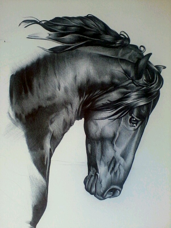 Sad Horse Head Tattoo Design
