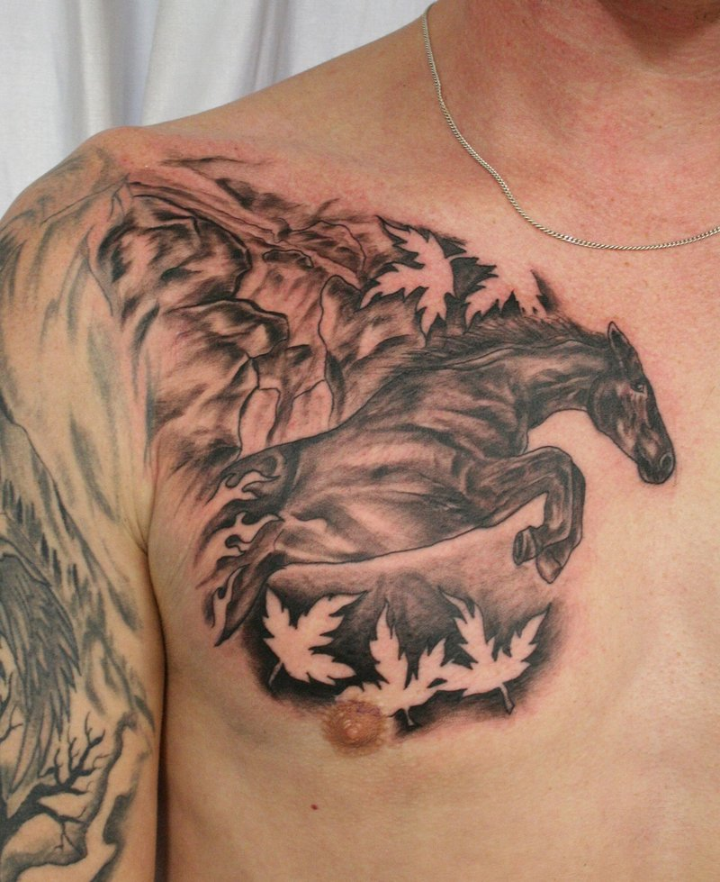 Traditional Horse Tattoo On Chest