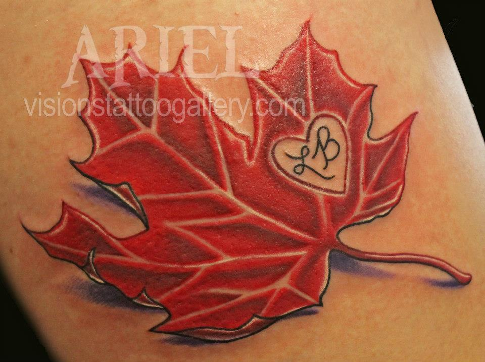 3D Maple Leaf T... Japanese Maple Leaf Drawing