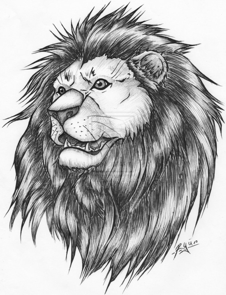Again Lion Tattoo Version