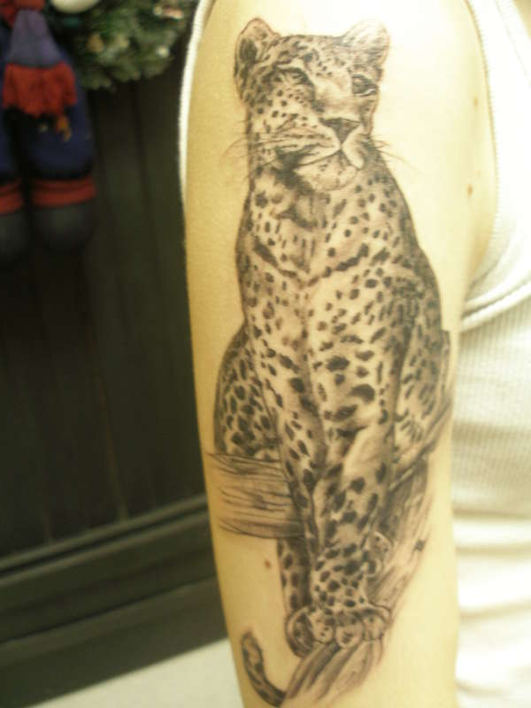 Amazing Leopard Tattoo Design On Arm