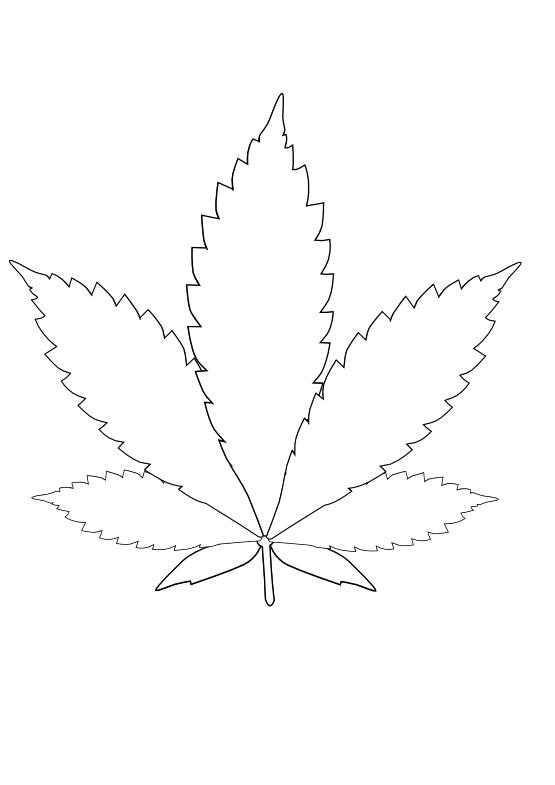 Cannabis Leaf Black White Line Art Tattoo