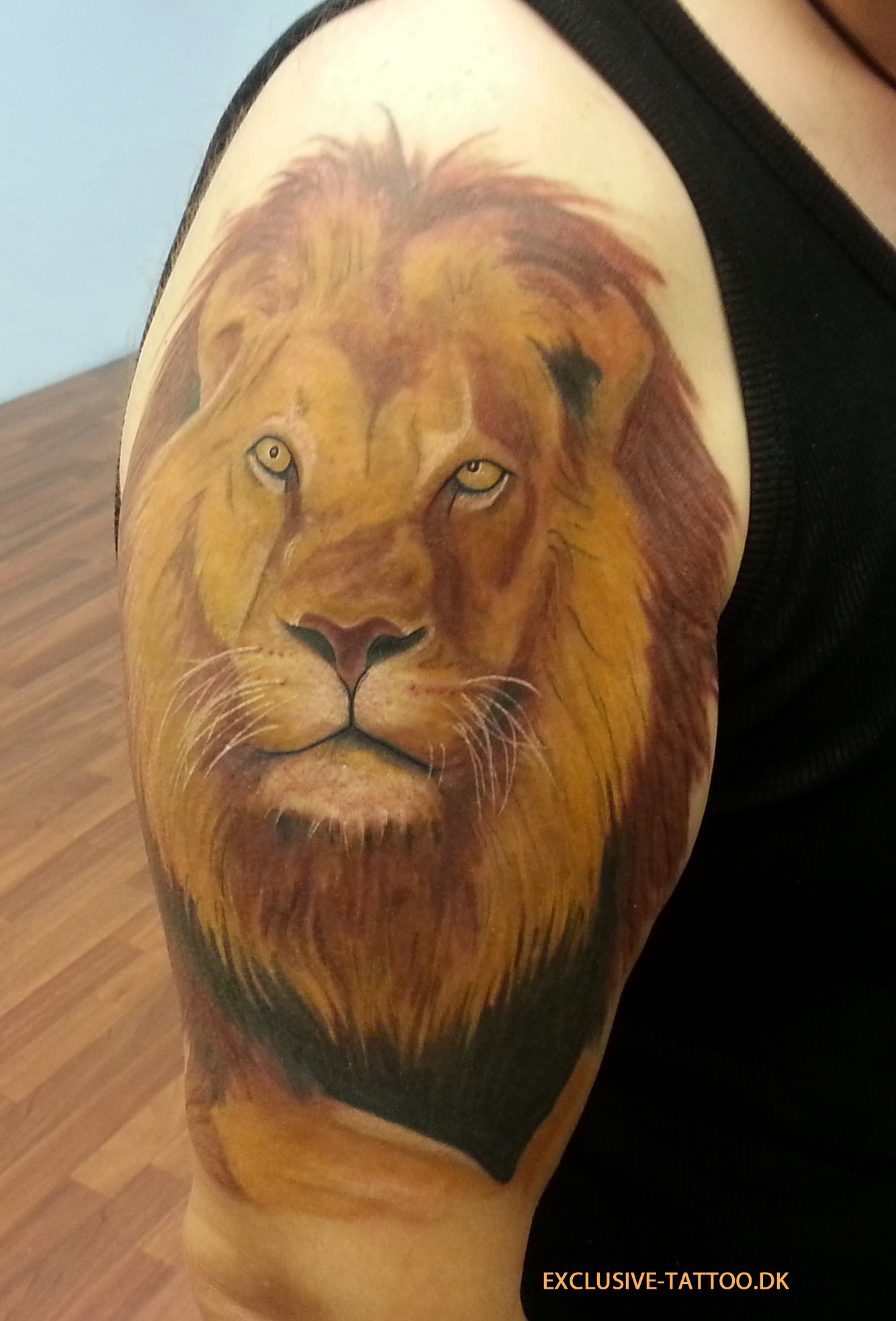 Half Sleeve Lion Tattoo Image For Men