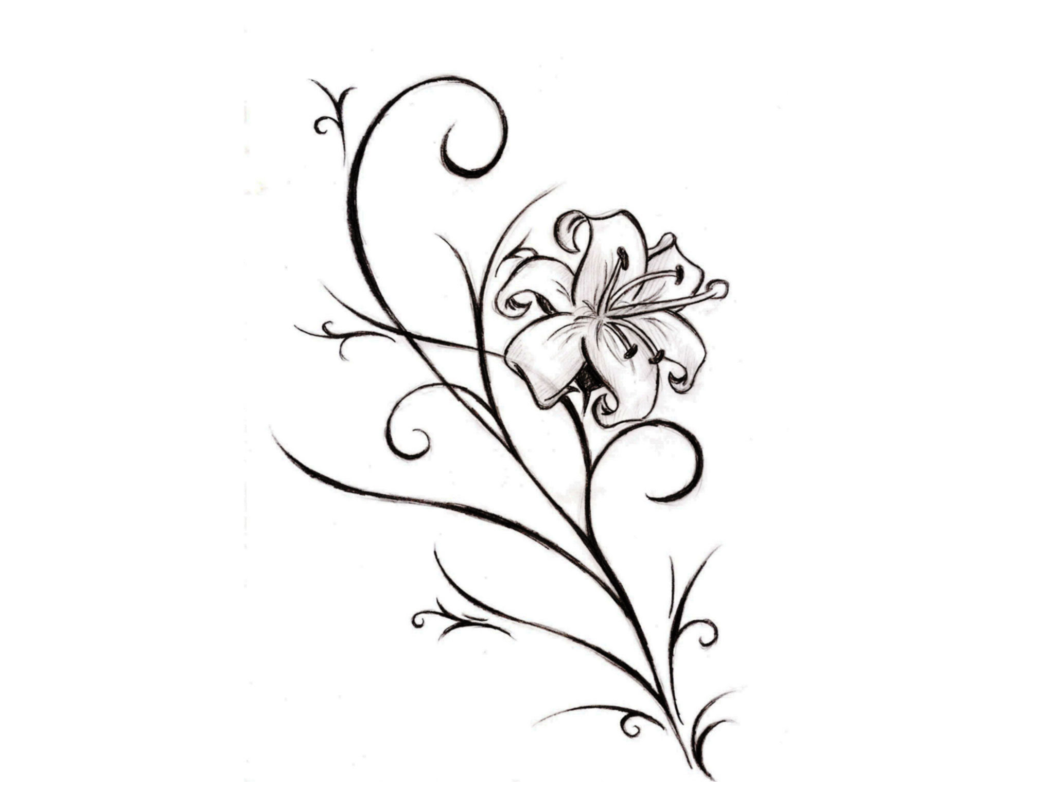 Lily tattoos designs and ideas page 21 lily flower tattoo stencil dhlflorist Images