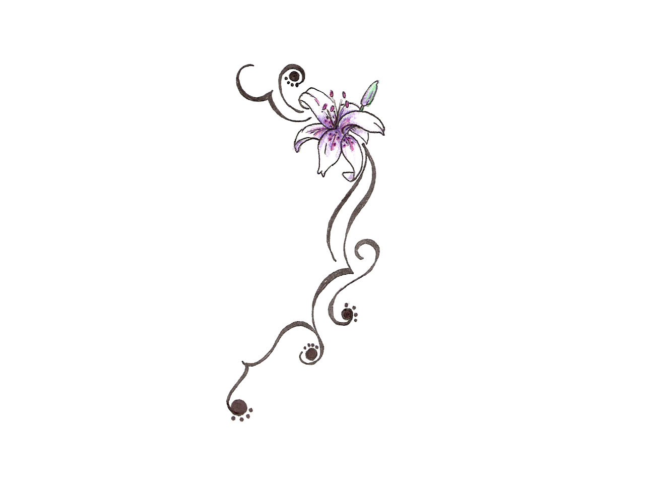 Lily Tattoos Designs And Ideas Page 61