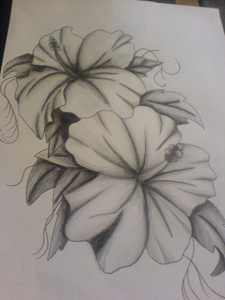 Lily Flowers Tattoo Sketch