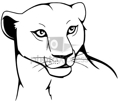 Lion Cub Tattoo Sample