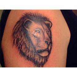 Lion Head Tattoo On Biceps
