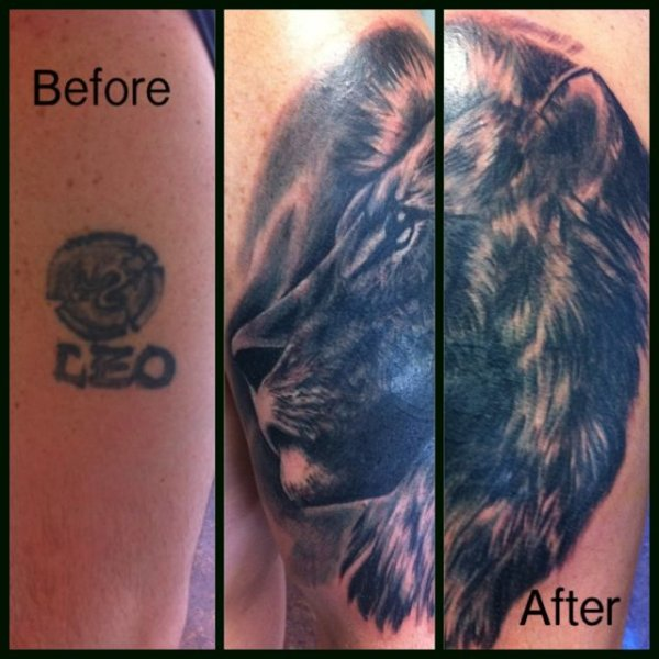 Lion Tattoo Stages