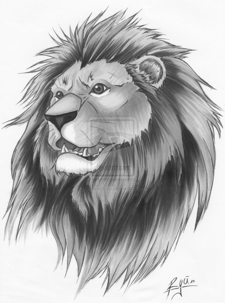 Lion Tattoo Version