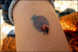 Real Ladybug On Ladybug Tattoo Design