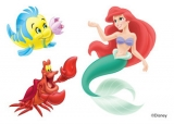 Disney Little Mermaid Temporary Tattoo Sheet