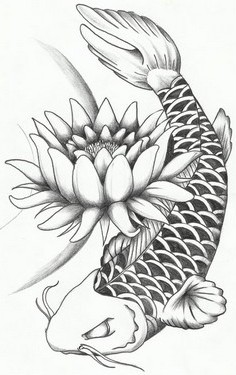 Lotus Flower And Koi Fish Tattoo Sample