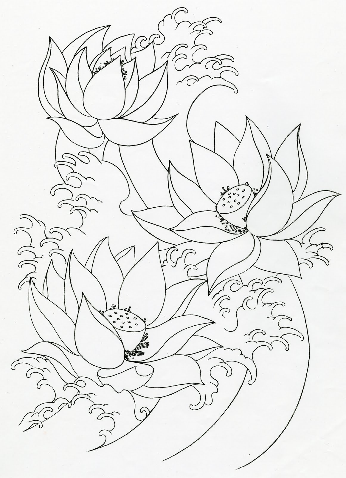 Lotus Flower Tattoo Drawing