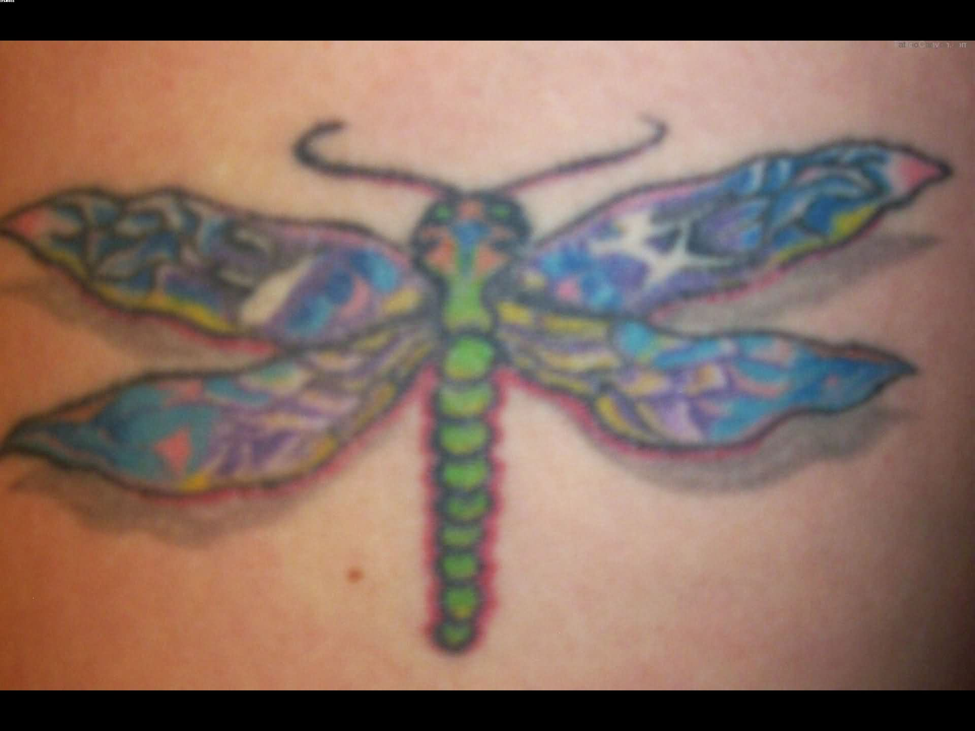 Color Ink Insect Tattoo