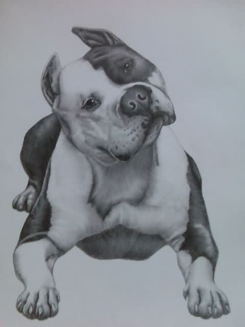 Pitbull Dog Tattoo Sample