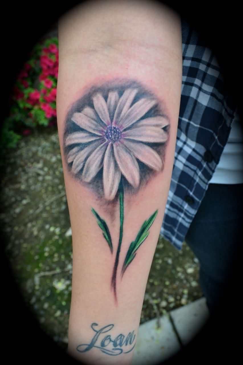 Realistic Daisy Tattoo On Forearm