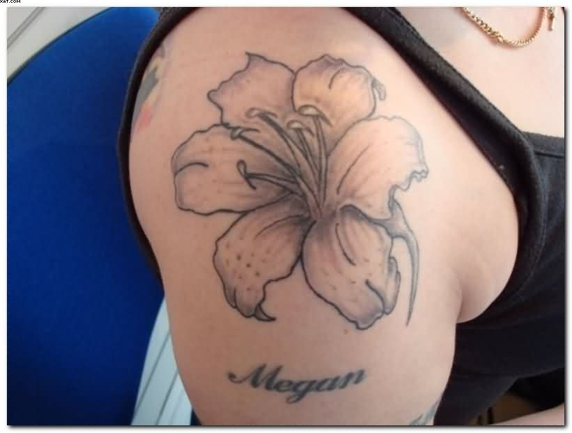 Realistic Hibiscus Flower Tattoo On Shoulder