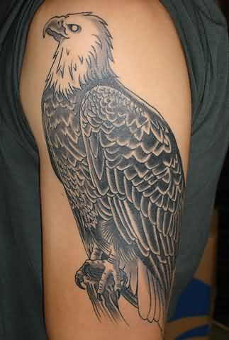 Sitting Eagle Tattoo On Biceps