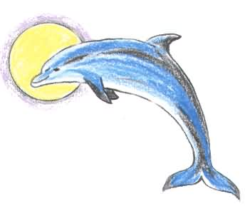 Sun And Dolphin Tattoo Drawing