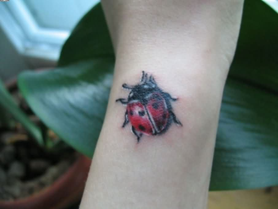 Pink Lady Bug Tattoo Tiny Lady Bug Tattoo For Wrist