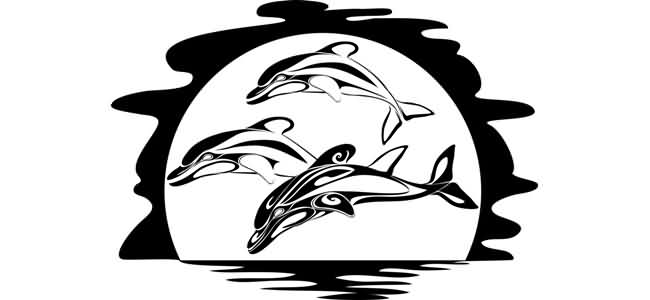 Tribal Dolphins Tattoo Design