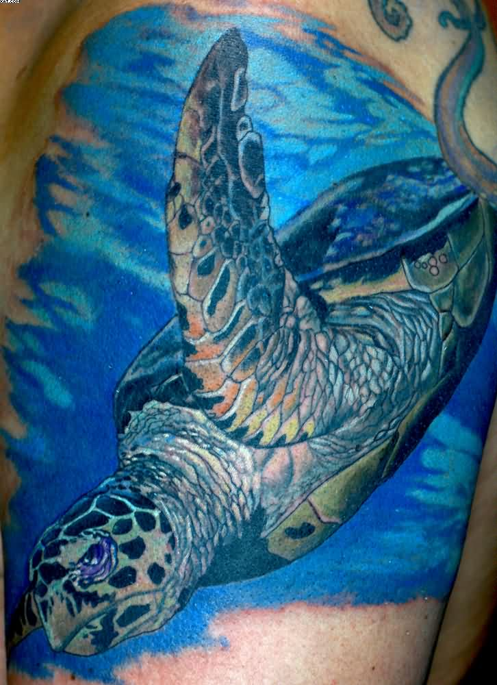 Underwater Turtle Aqua Tattoo