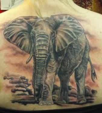Walking Elephant Tattoo On Back