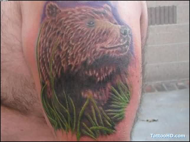 Wild Bear Tattoo On Muscles