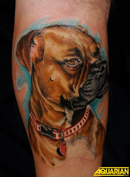 Wonderful Dog Portrait Tattoo