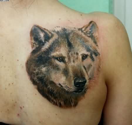 Amazing Wolf Tattoo On Back Shoulder