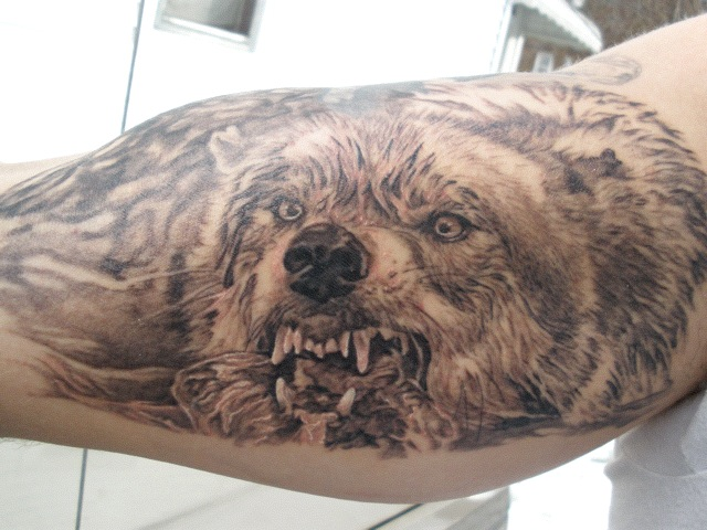 Angry Wild Wolf Tattoo On Arm