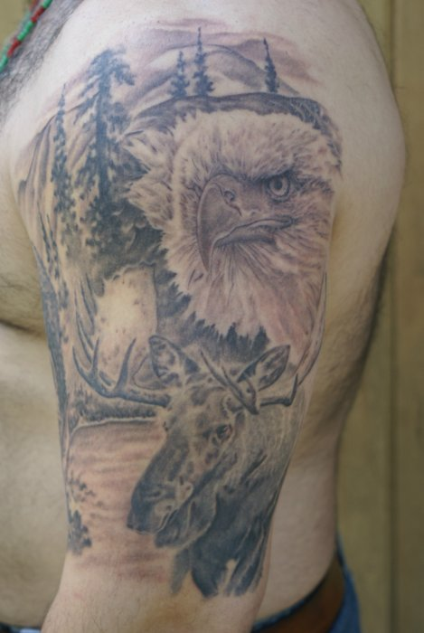 Half Sleeve Wildlife Animals Tattoos