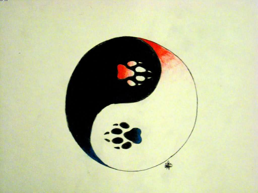 Ice Fire Yin Yang Tattoo Design