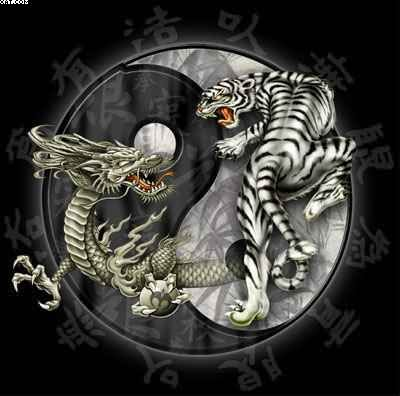 New Tiger Dragon Yin Yang Tattoo Design