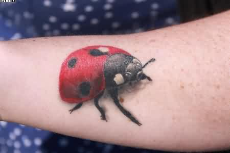 Realistic Moving Ladybug Tattoo