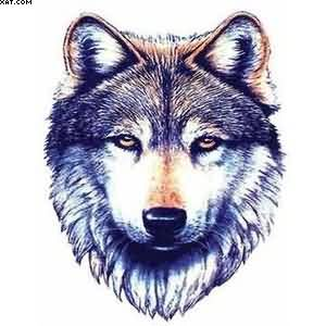 Wolf Face Tattoo Sample