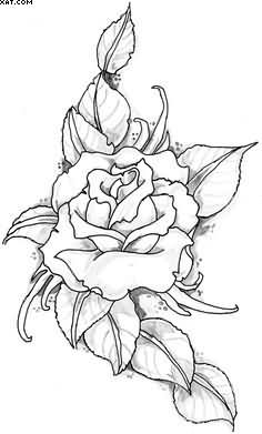 Rose Vine Tattoo Sketch