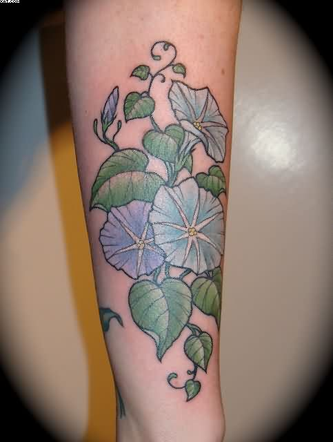 Vine Blue Morning Glory Flowers Tattoos On Forearm