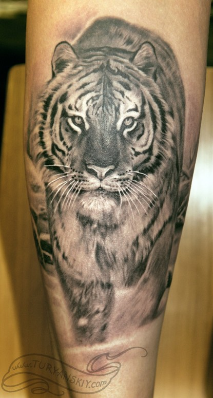 Amazing Grey Ink Tiger Tattoo For Arm